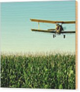 Crops Dusted Wood Print