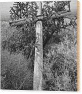 Cross, Behind The Ruins Of Santa Rosa De Lima Church, Abiquiu, N Wood Print