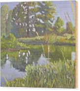 Cross Creek Wood Print