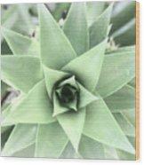 Cross Process Pineapple Wood Print