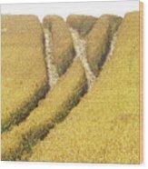 Crossed Lanes On Cornfield Wood Print