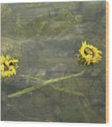 Crossed Sunflower  Wood Print