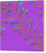 Crossing Branches 19 Wood Print