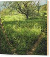 Crossing Paths Wood Print