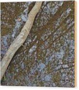 Crossing Reflections Wood Print