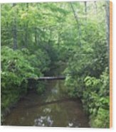 Crossing Wood Print