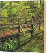Crossing The Rainforest Ravine Wood Print