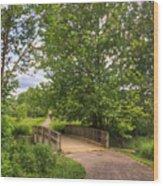Crossing Toms Creek Wood Print