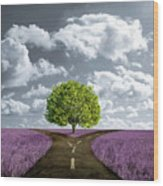 Crossroad In Lavender Meadow Wood Print