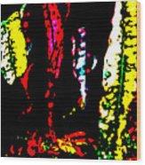 Croton 2 Wood Print by Eikoni Images