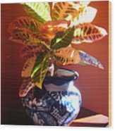 Croton In Talavera Pot Wood Print