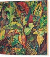 Crotones Wood Print