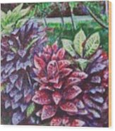 Crotons 1 Wood Print
