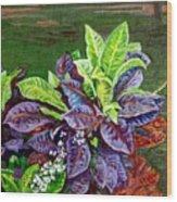 Crotons 2 Wood Print