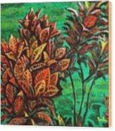 Crotons 5 Wood Print
