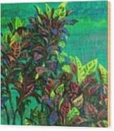 Crotons 7 Wood Print
