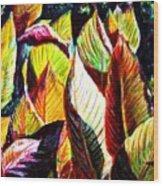 Crotons Sunlit 2 Wood Print
