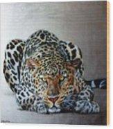 Crouching Leopard Wood Print