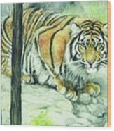 Crouching Tiger Wood Print