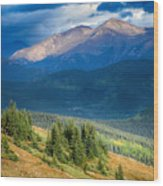 Crow On A Mountainside Wood Print
