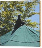 Crow On An Umbrella Wood Print