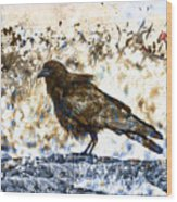 Crow On Blue Rocks Wood Print