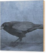 Crow Searching For Seashells Wood Print