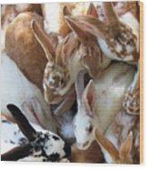 Crowd Of Rabbits Wood Print