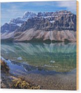 Crowfoot Reflection Wood Print