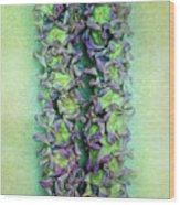Crown Flower Lei Wood Print