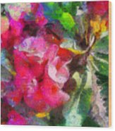 Crown Of Thorns Wood Print