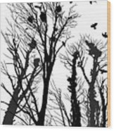 Crows Roost 1 - Black And White Wood Print