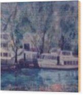 Cruiseboat On Rhine River Germany Wood Print
