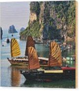 Cruising Ha Long Bay  Vietnam Wood Print