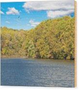 Crum Creek In Autumn Wood Print