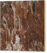 Crumbling Interior Wood Print