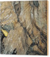 Crystal Cave Wall Formations Wood Print