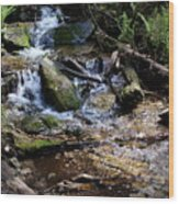 Crystal Clear Creek Wood Print