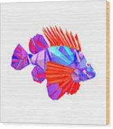 Crystal Fish - 20 Wood Print