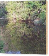 Crystal Lake Reflection Wood Print