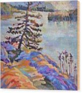 Crystal Light Over The Lake Wood Print