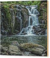 Crystal Pool Falls Wood Print