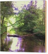 Crystal River Wood Print