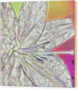 Crystal White Lily Wood Print
