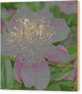 Crystalline Flower Wood Print