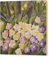 Crystal's Primroses Wood Print