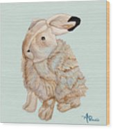 Cuddly Arctic Hare II Wood Print