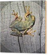 Cudjoe Key Frog Wood Print