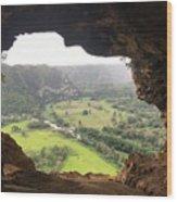 Cueva Ventana Wood Print