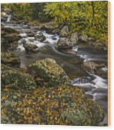 Cullasaja River In Autumn Wood Print